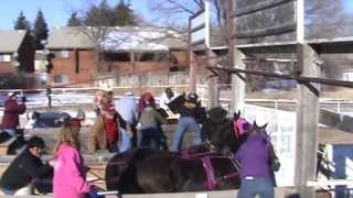 Young Gunz Chariot Racing Video #3
