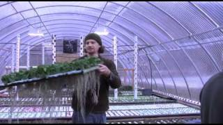 Chappaqua Farmer's Market - Aqua Farm