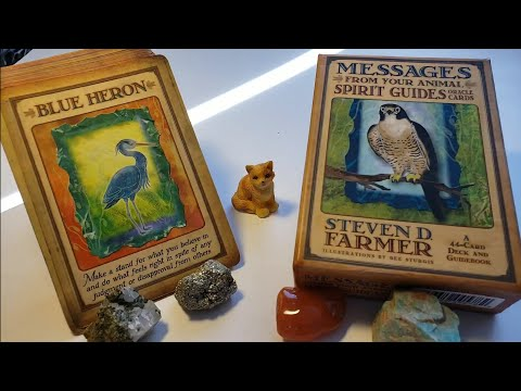 ◇-messages-from-your-animal-spirit-guides-oracle-deck-♡-review-and-thoughts-😍💖☺