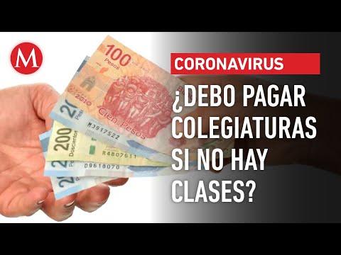 ¿Debo pagar colegiaturas si no hay clases por coronavirus? Esto dice Profeco