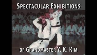 Exhibitions of Y K Kim 3