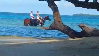 Imagine...  a tropical island wedding like this!