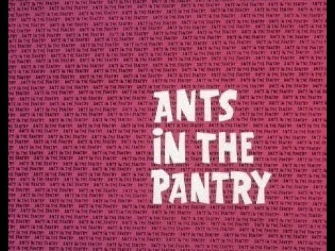 Ant and the Aardvark: ANTS IN THE PANTRY + 2 bumpers (TV version, laugh track)