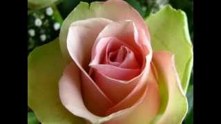 O Pardesi Babu [Full Song] (HD) - Kasam