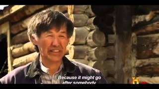 Evidence of New Hybrid Bears (Documentary)