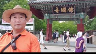 초보산행님의 2018년 경주 세계문화유산 탐방경주시티투…