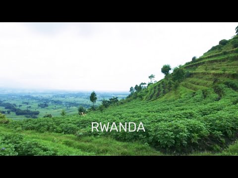 Luxaviation Amazing Trips - Rwanda