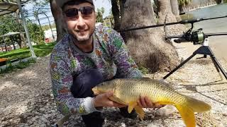 Первая рыбалка на озере Кинерет 12 03 с прикормочным корабликом