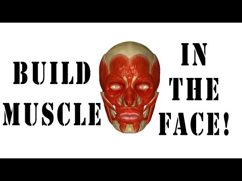 How To Strengthen Face And Jaw Muscles