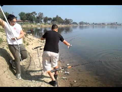 Santa ana river lake fishing with t rex 1 youtube for Santa ana river lakes fishing