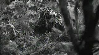 Tarzan's Desert Mystery.avi