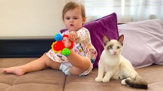 Baby and Cat Fun - Funny Video!