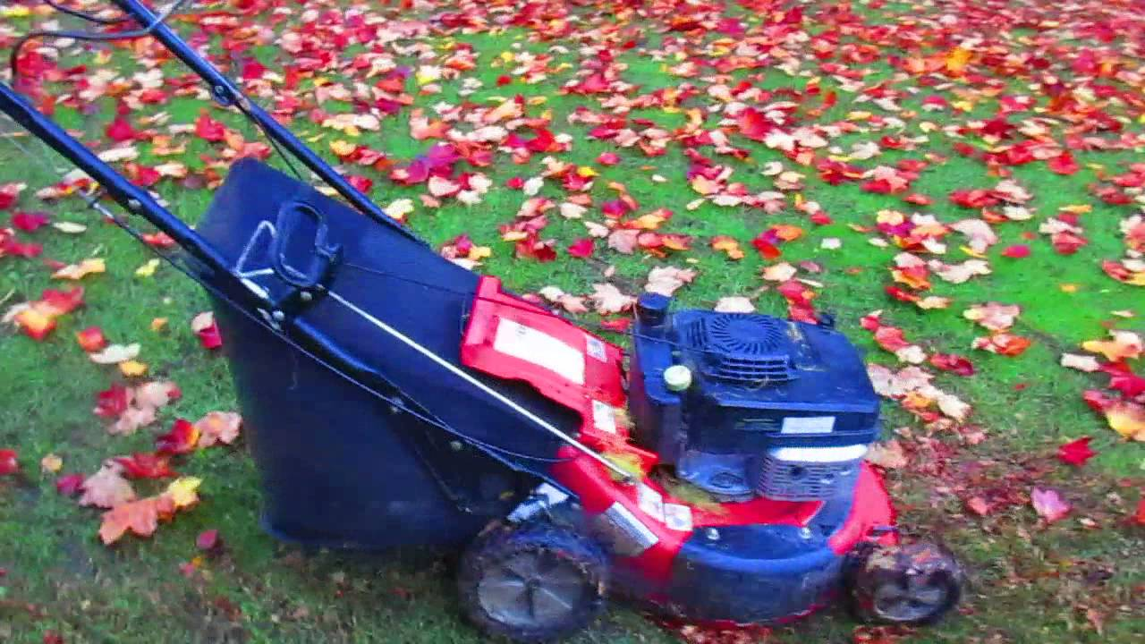 Best Way To Pick Up Leaves Youtube