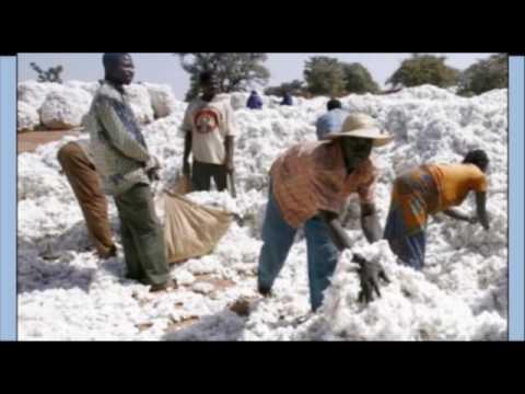 Rwanda -Icyo Minisiteri y' ubucuruzi n' inganda ivuga  ku guca   Caguwa