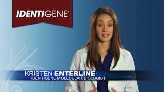 IDENTIGENE DNA Paternity Test: New York Paternity Test