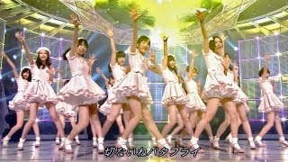 "HKT48 first original song ""Hatsukoi Butterfly"" (Meaning of ""First l..."
