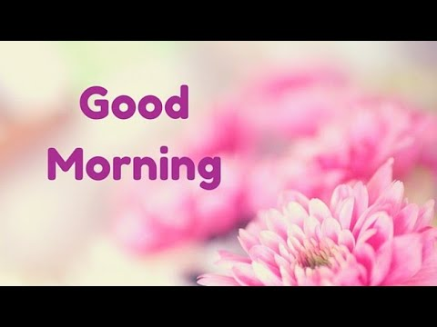 Good Morning Whatsapp Status - 15 - ??? ???????? ???????? ??????