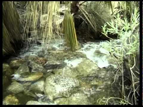 California State Parks: Russ Christoff visits Anza-Borrego Desert SP