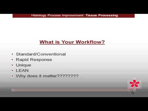 Histology Process Improvement—Tissue Processing From Conventional Overnight to Continuous Rapid