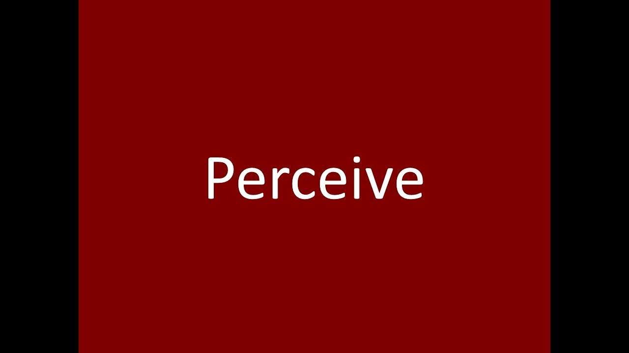 perceive meaning definition pronunciation example synonym antonyms