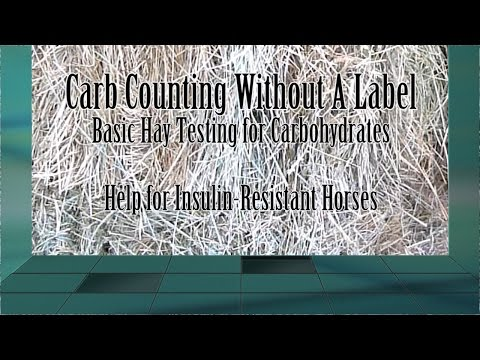 Insulin Resistant Horse?  How to Sample Your Hay for Testing