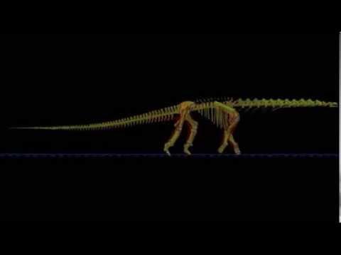 Locomotor Dinosaurus Sauropoda Argentinosaurus