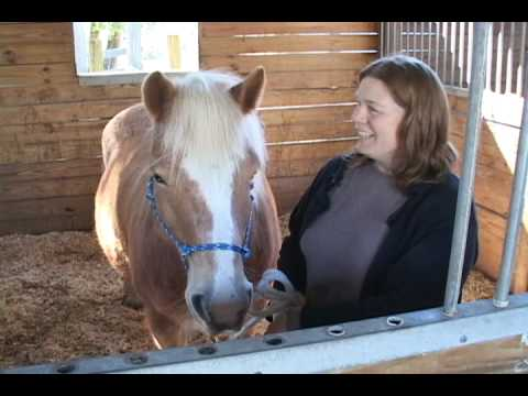 Horse Teen Porn