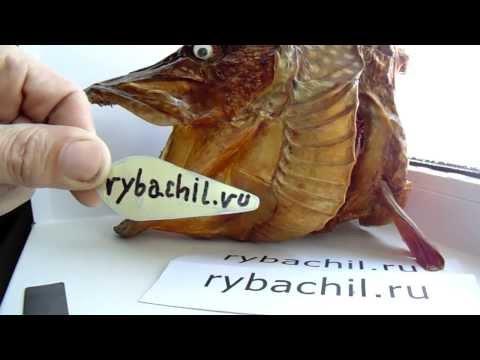 Изготовление блесны на щуку в домашних условиях.Видео rybachil.ru