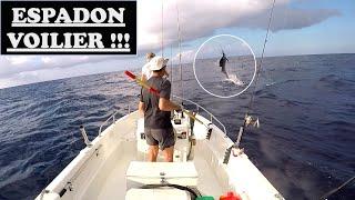 """""""ESPADON VOILIER"""",THON jaune, WAHOU, mérou au jig, pêche à MAYOTTE, vidéo#10"""