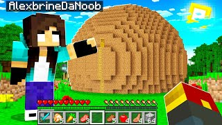 noob Girl builds BIGGEST Dirt house in Minecraft (Secret)