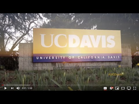 Our UC Davis International Community