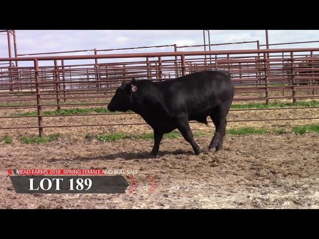 Mead Farms Lot 189