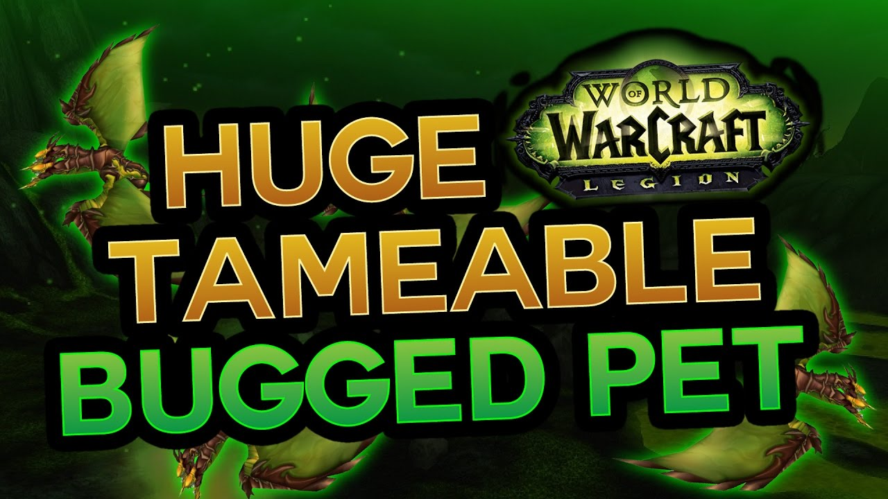 Biggest Tameable Hunter Pet Wow Legion Pvp Youtube