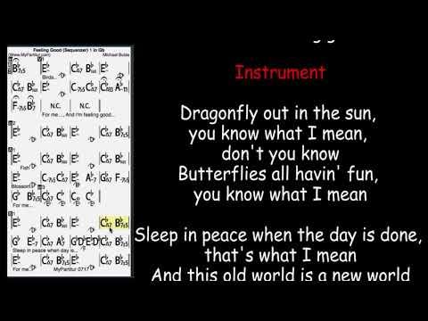 Feeling Good Chords at MyPartitur Lyrics - YouTube