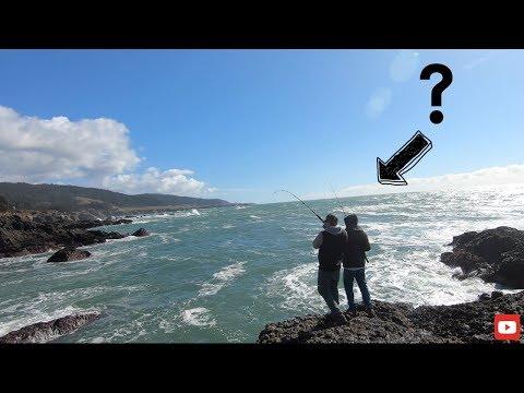 Rock Fishing The California Coast!