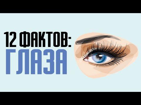 12 интересных фактов о глазах: особенности и цвет глаз