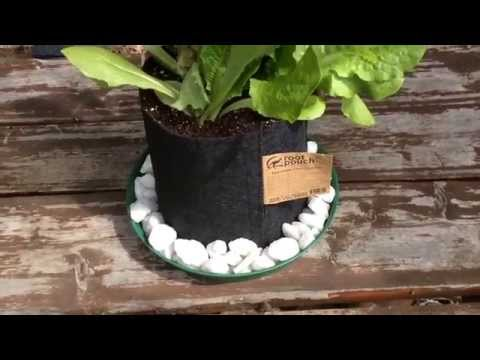 Make A Self Watering Grow Bag Salad Bar In Seconds!