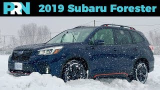 Ultimate Winter Warrior | 2019 Subaru Forester Sport | TestDrive Spotlight