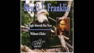 Rev.  C.  L.  Franklin  - The Eagle Strirreth Her Nest 2