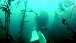 Monterey Bay, California Scuba Diving -- GoPro HD Hero 1080p