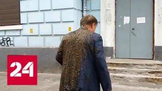 СК возбудил дела по факту нападений на российских дипломатов на Украине - Россия 24