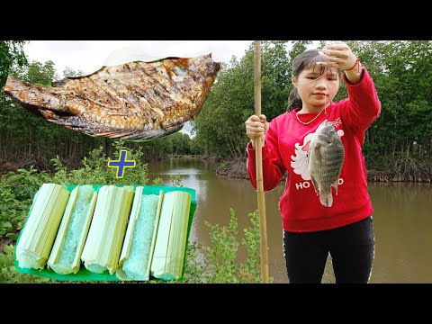 Primitive Technology -  Cooking Rice With Bambo Tube & Grilled Fish By Girl - Eating Delicious