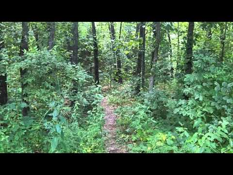 Adventure: #48 Little Lost Creek Conservation Area