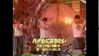 1999年頃の映像 下川みくに 熊切あさ美 町田恵.