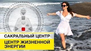 сакральный Центр Проектор Генератор Манифестор Рефлектор Дизайн человека