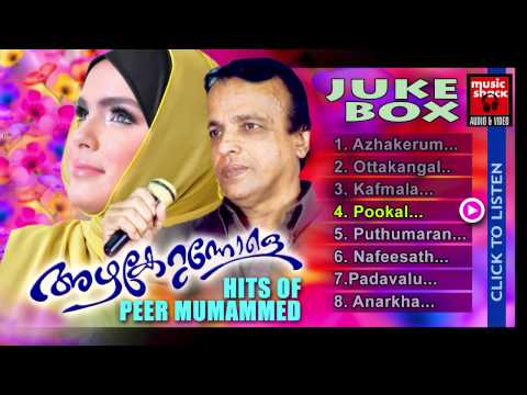 Mappila Pattukal Old Is Gold | Azhakerunnole | Peer Muhammed Malayalam Mappila Audio Jukebox