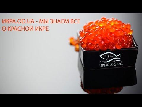 Икра красная лососевая нерест 2019 год видео обзор