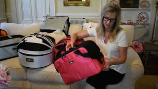 The Perfect Small Pet Carriers For Our Persian and Himalayan Cats and Kittens
