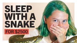 Sleep with a Snake for $2500