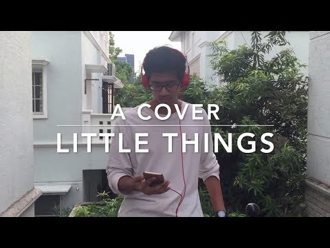 Little Things|One Direction|Karaoke Cover|Anuraag Baggu